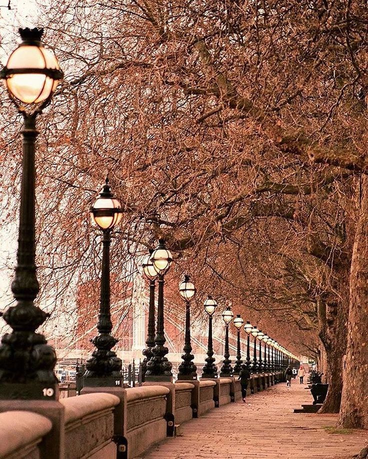 Chelsea embankment London