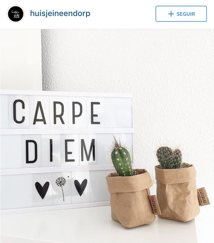 carpe diem                                                                                                                                                                                 More