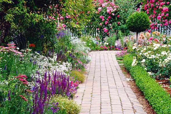 Planting Perennials and Annuals That Last: Garden Ideas, Yard, Garden Paths, Outdoor, Gardens, Gardening, Flowers