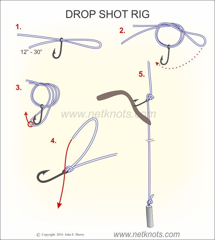 25 best ideas about drop shot rig on pinterest drop