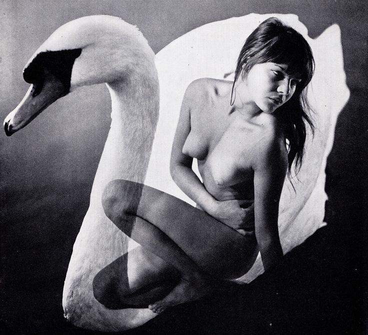 """""""Stop"""" n°58, 1966, by Johannes Zachs"""