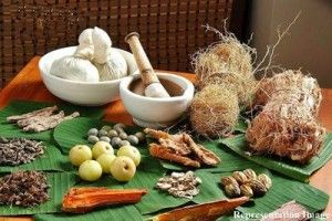 Chhattisgarh Govt. to produce Ayurvedic drugs on mega scale - http://mybodysnutrition.com/chhattisgarh-govt-to-produce-ayurvedic-drugs-on-mega-scale