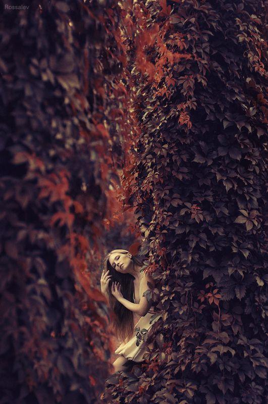 Fashion Photography - Violin bre* by Andrey Rossalev, via 500px
