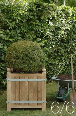 Large garden planters – Orange Tree Planters