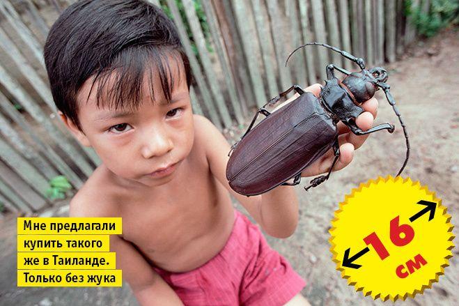Кто сказал «ВАУ!»: шокирующе огромные животные-переростки