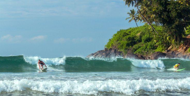 International surf school in Sri Lanka.