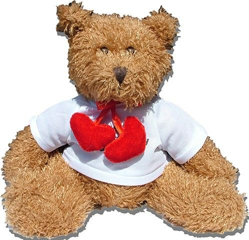 Teddy mit 2 Herzen