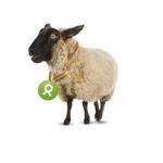 OxfamUnverpackt (eng: unpacked)  Hier können Sie eineinhalb Ziegen kaufen, einen Monat Trinkwasser oder auch eine Schulbank. Natürlich nicht für Sie selbst, sondern für Menschen in Not. OxfamUnverpackt sorgt dafür, dass Menschen in Entwicklungsländern mit dem Nötigsten versorgt werden.