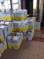 mosquitos y malos olores en Jefatura superior Policía Canarias