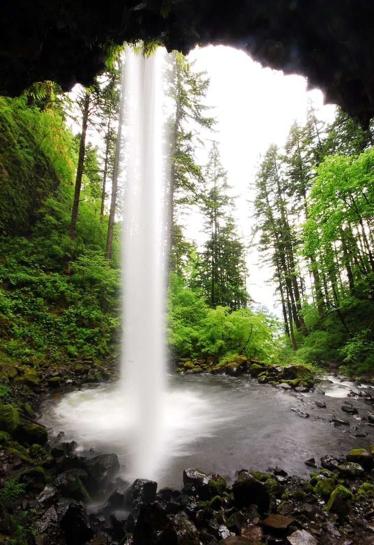 Ponytail Falls.- Waterfall Hikes in the Columbia River Gorge