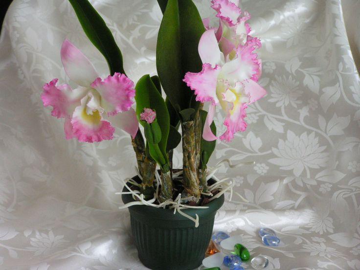 Другой ракурс орхидеи из хф