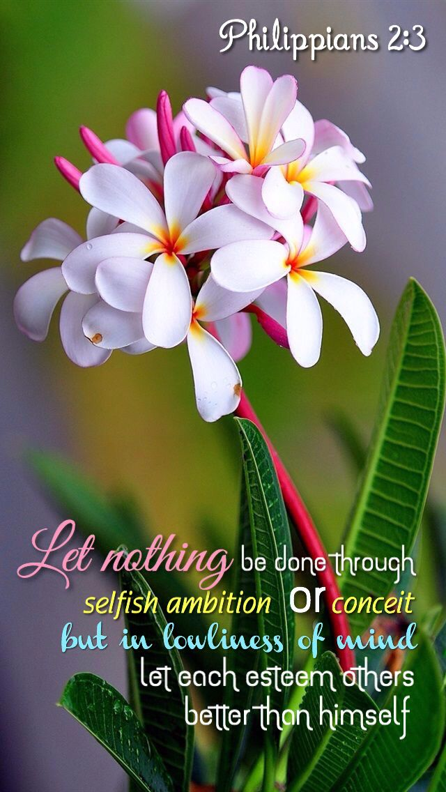 <3 <3 Philippians 2:3-4 (NKJV) 3 Let nothing be done through selfish ambition or conceit, but in lowliness of mind let each esteem others better than himself. 4 Let each of you look out not only for his own interests, but also for the interests of others.
