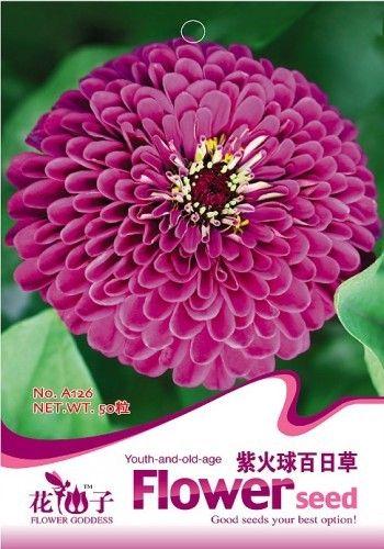 Фиолетовый Цветок Цинния Семена, оригинальной Упаковке 50 шт. Сад бонсай семена цветов, легко Выращивать Фиолетовый Цинния элеганс