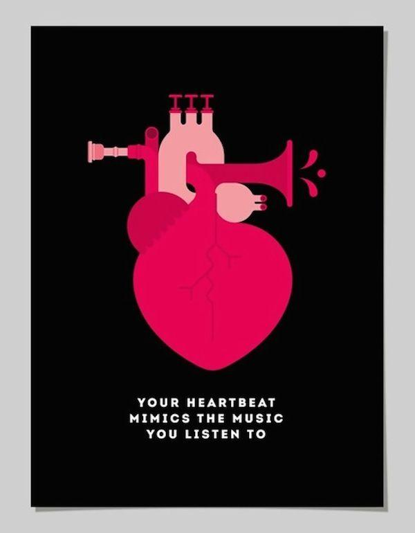 Il corpo umano spiegato coi poster