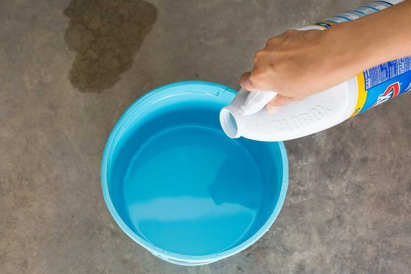 How to get cat urine smell out of concrete household for Household cement