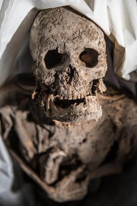 "#TBT National Geographic photo: Tooth Decay ""Most of the mummies showed signs of cavities, and some had dental infections, suggesting that they didn't have very good dental hygiene""  http://news.nationalgeographic.com/2015/04/150416-mummy-pictures-crypt-death-health-medicine-lithuania/?utm_content=bufferbee14&utm_medium=social&utm_source=pinterest.com&utm_campaign=buffer"