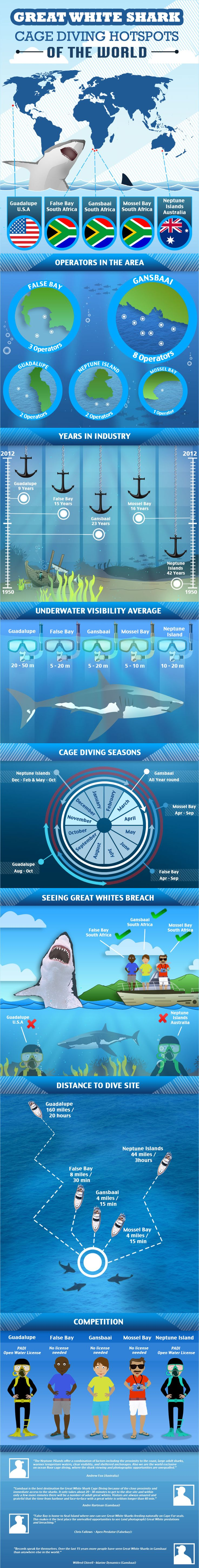 Great White Shark Cage Diving Hotspots of the World Infographic