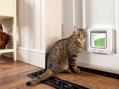 Microchip cat doors and feeders. Life-changing pet technology from SureFlap; the award-winning smart pet product specialist.