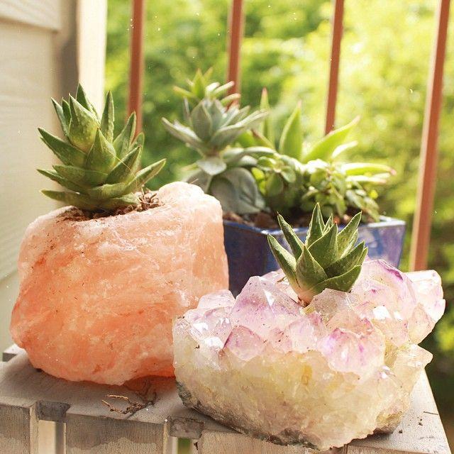 Crystal Tea Lights double as succulent pots, Amethyst and Himalayan Salt. Modern Elm