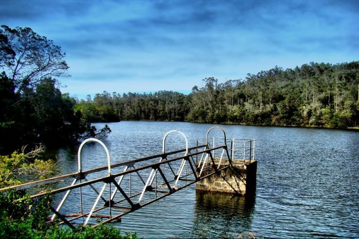 """Berijam Lake is a reservoir near Kodaikanal town in Dindigul district of Tamil Nadu, South India. It is at the old site of """"Fort Hamilton"""", in the upper Palani hills. It is a calm serene lake surrounded by mesmerizing nature at a distance of around 21 kms from Kodaikanal. Berijam Lake is one of the most eye-catching tourist spot in Kodaikanal.  #travel #attraction #destination #berijam-lake #kodaikanal #tamilnadu #lake #nature #hills #tourist #spot"""