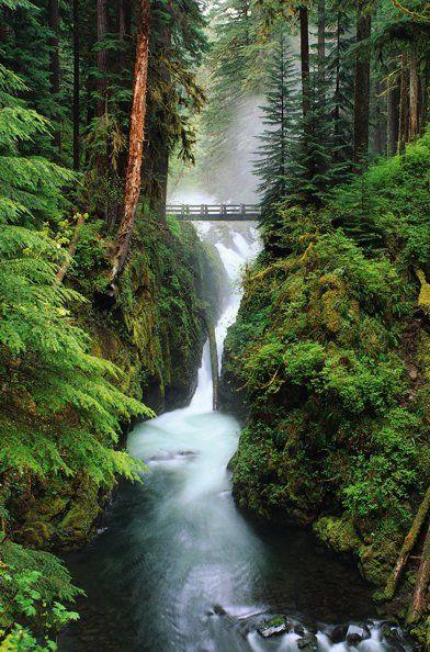 Readers' favorite travel destination: Washington State.