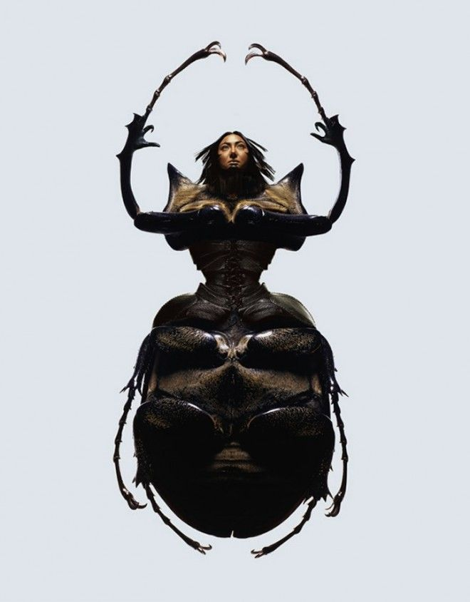Mujeres insecto x Laurent Seroussi4
