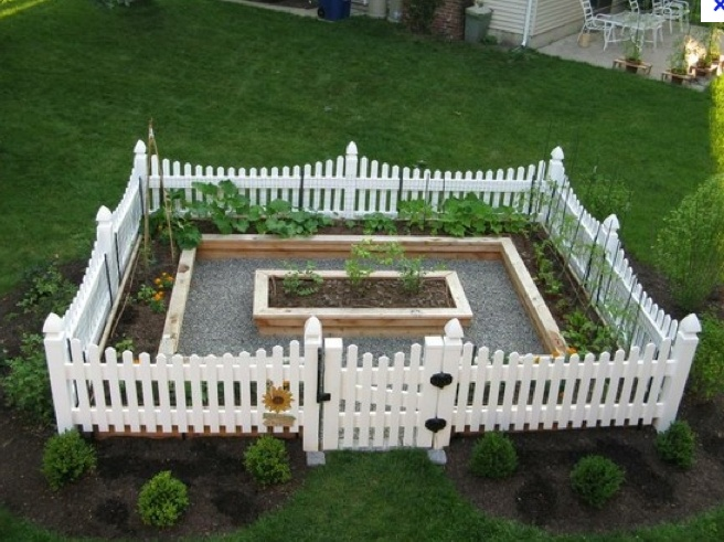 Cedar Raised Beds, Gravel Path, White Vinyl Fence Make A Pretty, Functional  Vegetable Garden.