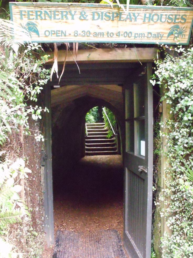 Entering the Fernery ... duck your head if your tall ;)