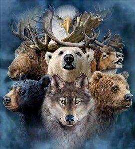 https://shamanicpath.wordpress.com/2017/05/14/spirit-animals/