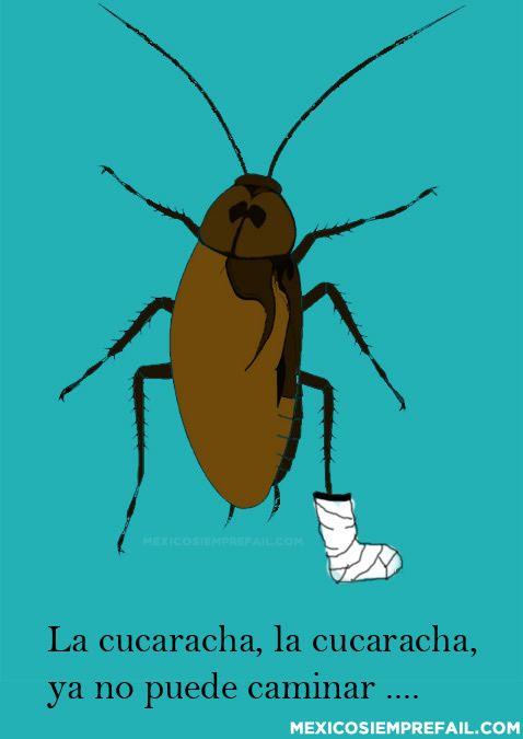 La cucaracha jajajaja