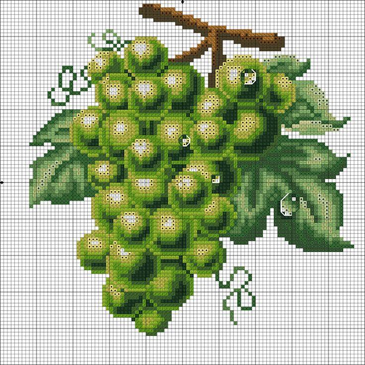 Meyve üzüm