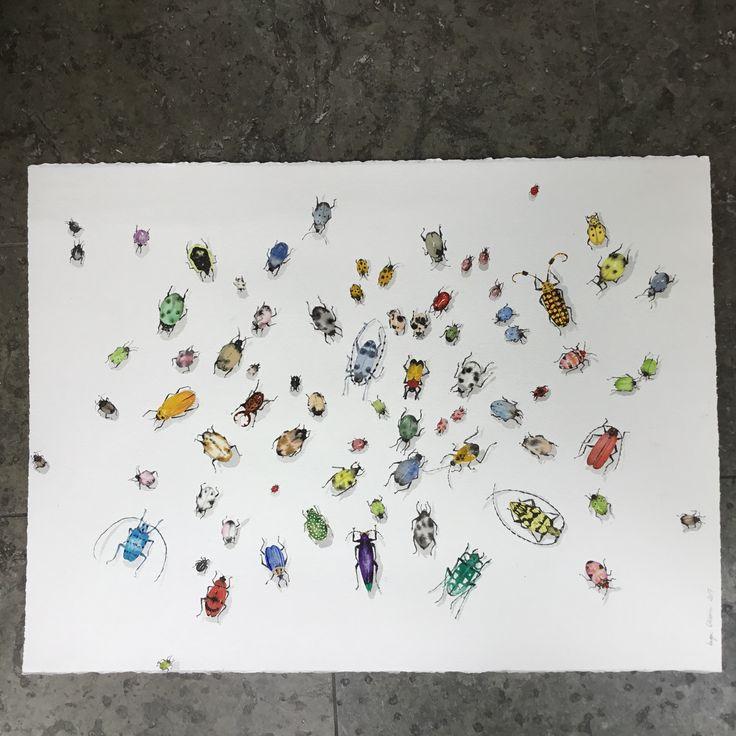 76 bugs