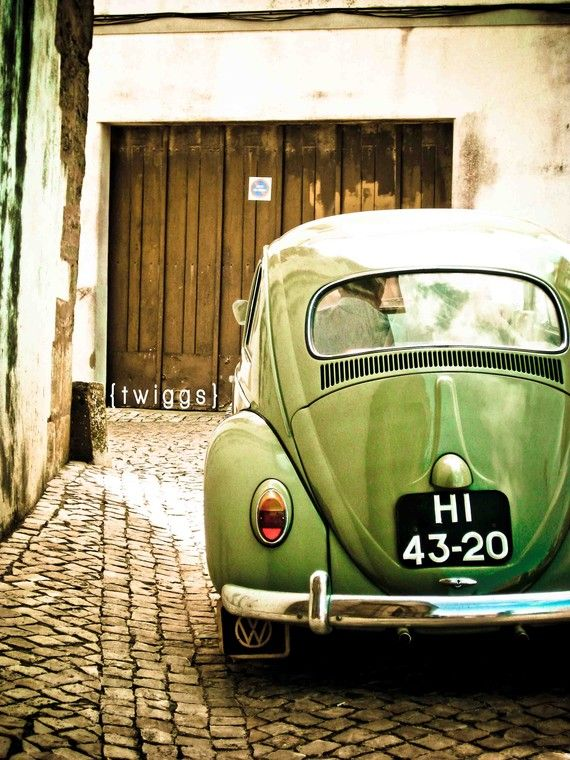 green beetle print
