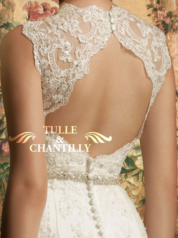 Fluency-Sophisticated V-neck  Lace Wedding Gown 1
