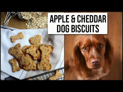 Easy Homemade Dog Treats For Your Pup All Natural Apple And