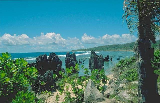 Nauru: Pacific Islands, Mine Awesome, Islands National, Smallest Islands, Nauru Photographers, Phosphat Mine, Air Nauru, Diving Coral, Coral Reefs