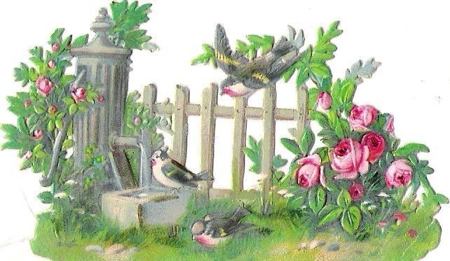 Oblaten Glanzbild scrap die cut chromo Vogel bird oiseau Garten garden jardin