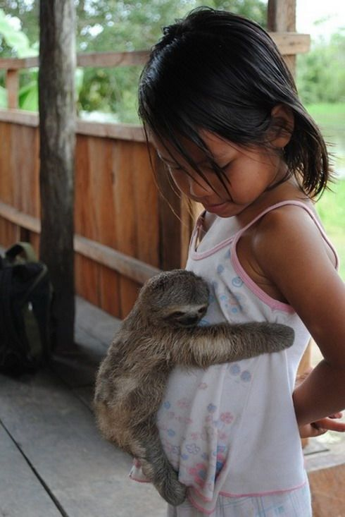 Sloth hug! Sloth cub clings to girl at the Sloth Sanctuary near Limón, Costa Rica.