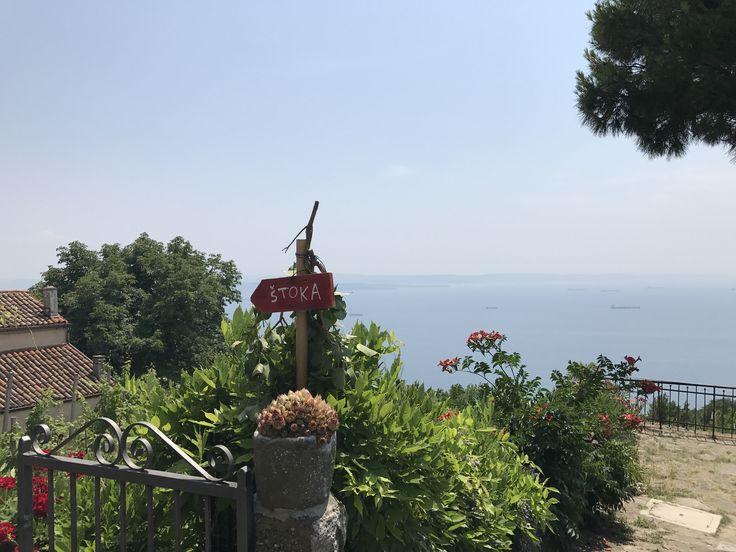 Es tradición de la Osmiza poner una flecha roja con un ramito colgando, la casa donde fuimos tenía esta vista