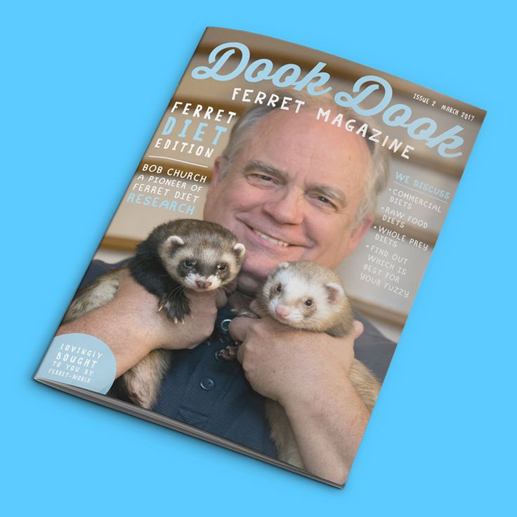 NEW Ferret Diet Edition of Dook Dook Ferret Magazine is out now for a limited time! Get yours now https://ferret-world.mykajabi.com/p/dook-dook-ferret-magazine-march-17