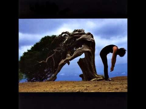 Brian may another world album - Wilderness