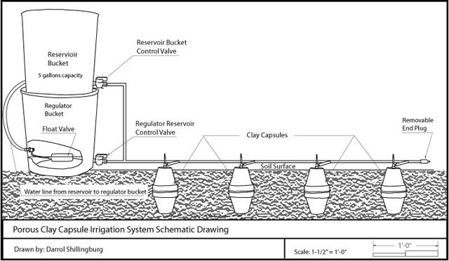 Porous Clay Capsule Irrigation: I like the idea of combining drip irrigation with ollas.