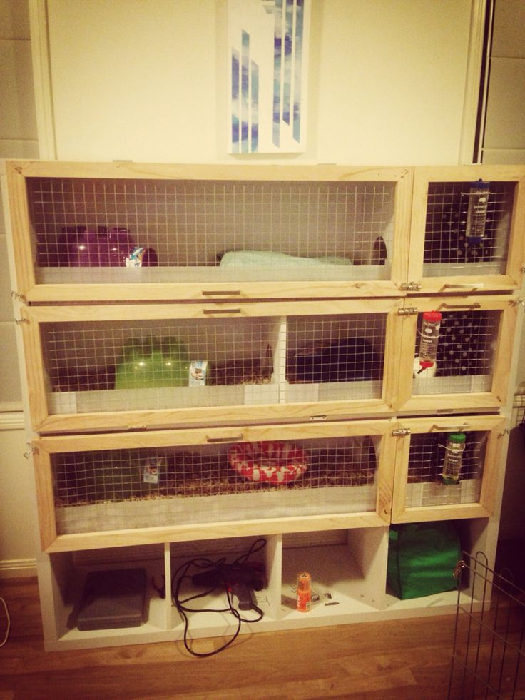 Finished my diy guinea pig cage using storage cube shelf for Diy guinea pig hutch