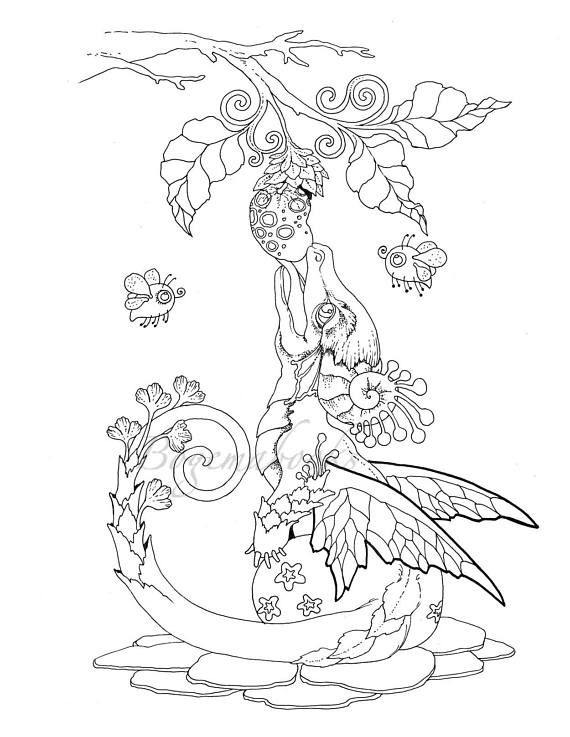 Nice Little Dragons Adult Coloring Book Coloring Pages Pdf