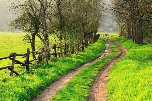 Country Road: The Roads, Wooden Fences, Buckets Lists, Paths, Walks, Country Roads, Back Roads, Dirt Roads, Healthy Life