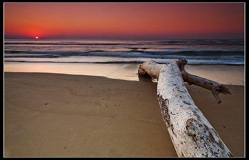 South Africa - Cintsa: Drawn to the Sun