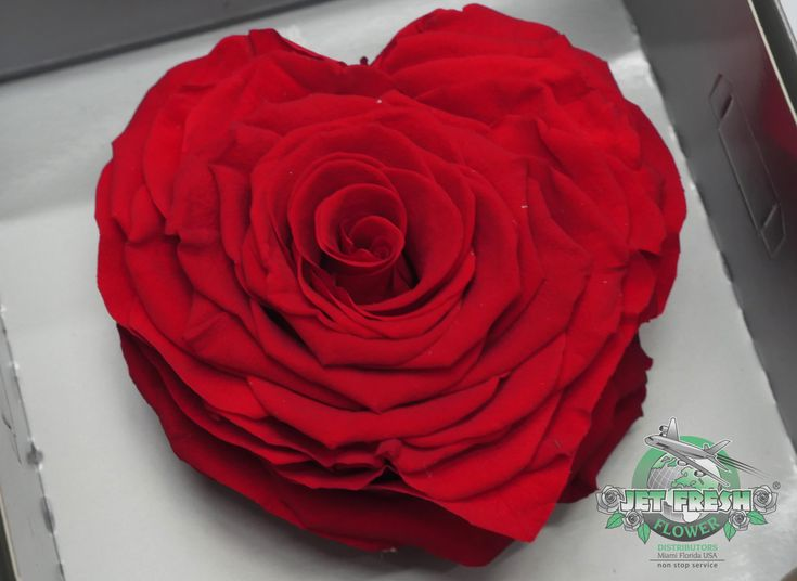 Jetfreshflowers Red Corazon Heart Shaped Preserved Rose Roses Are Available At
