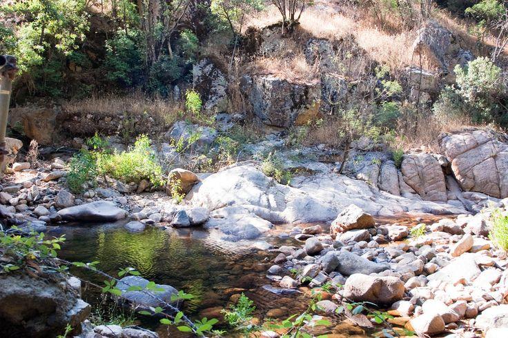 Un'escursione alla foresta di Pixina Manna a Pula
