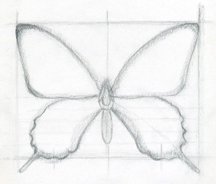 Easy to Draw Butterflies | How To Draw A Butterfly