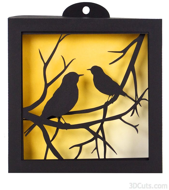 Birds shadow box